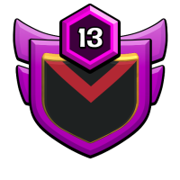 SA ASSASINS badge