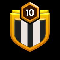 Pdg Piol Army badge